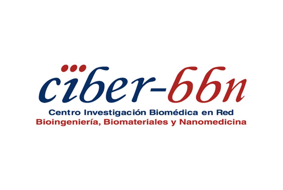Centro de Investigación Biomedica en Red en Bioenginiería, Biomateriales y Nanomedicina (CIBER-BBN)
